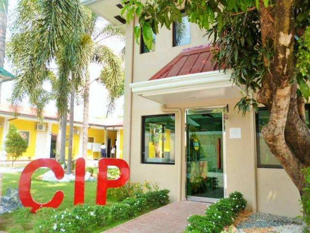 CIP OFFICE