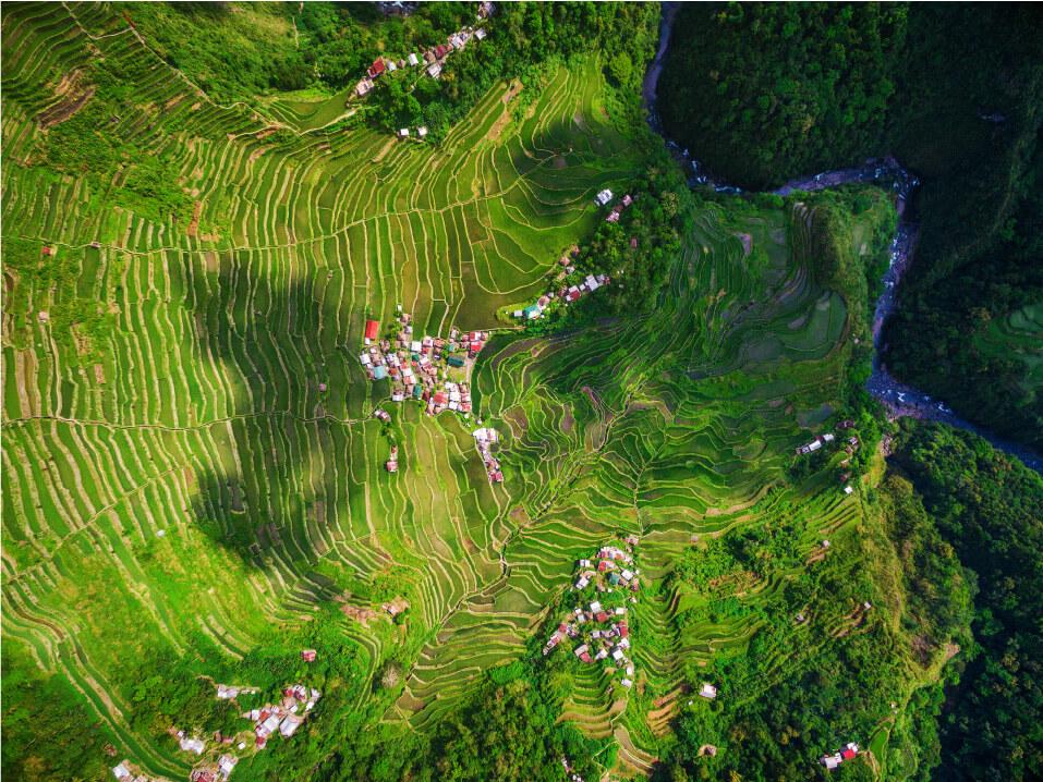 rice-terrace-sky